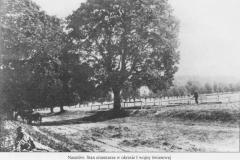 Cmentarz w okresie I wojny światowej