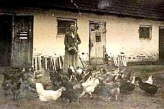 Aniela z Głowaczów Żbikowska, Nasutów,okupacja